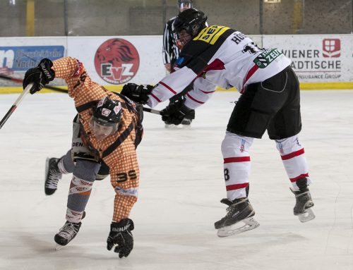 "LL: Junior Lions ""kochen"" Hot Shots ein"