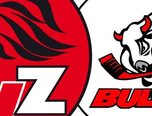 Lions und Bulls auf gemeinsamen Pfad…