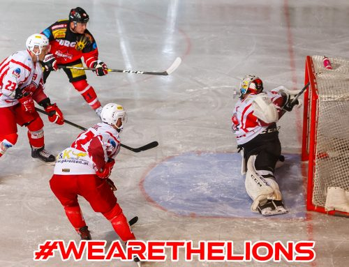 Dezimierte Lions unterliegen in Kapfenberg!