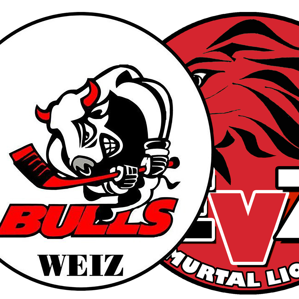 Weiz/ HCH vs EV Zeltweg Murtal Lions