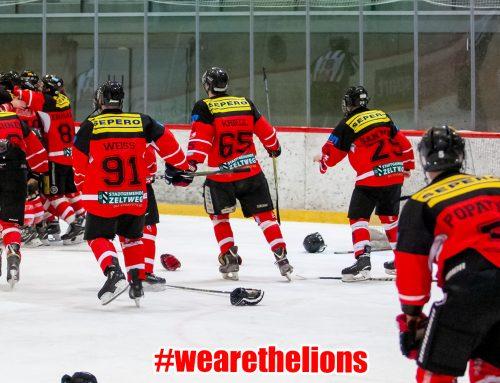 LL: Löwen II siegen und sind im Finale!